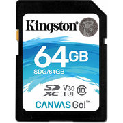 Kingston SDG/64GB 64GB фото